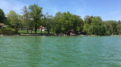 Ansicht auf das Ufer des Pilsensees, vom SUP aus fotografiert.